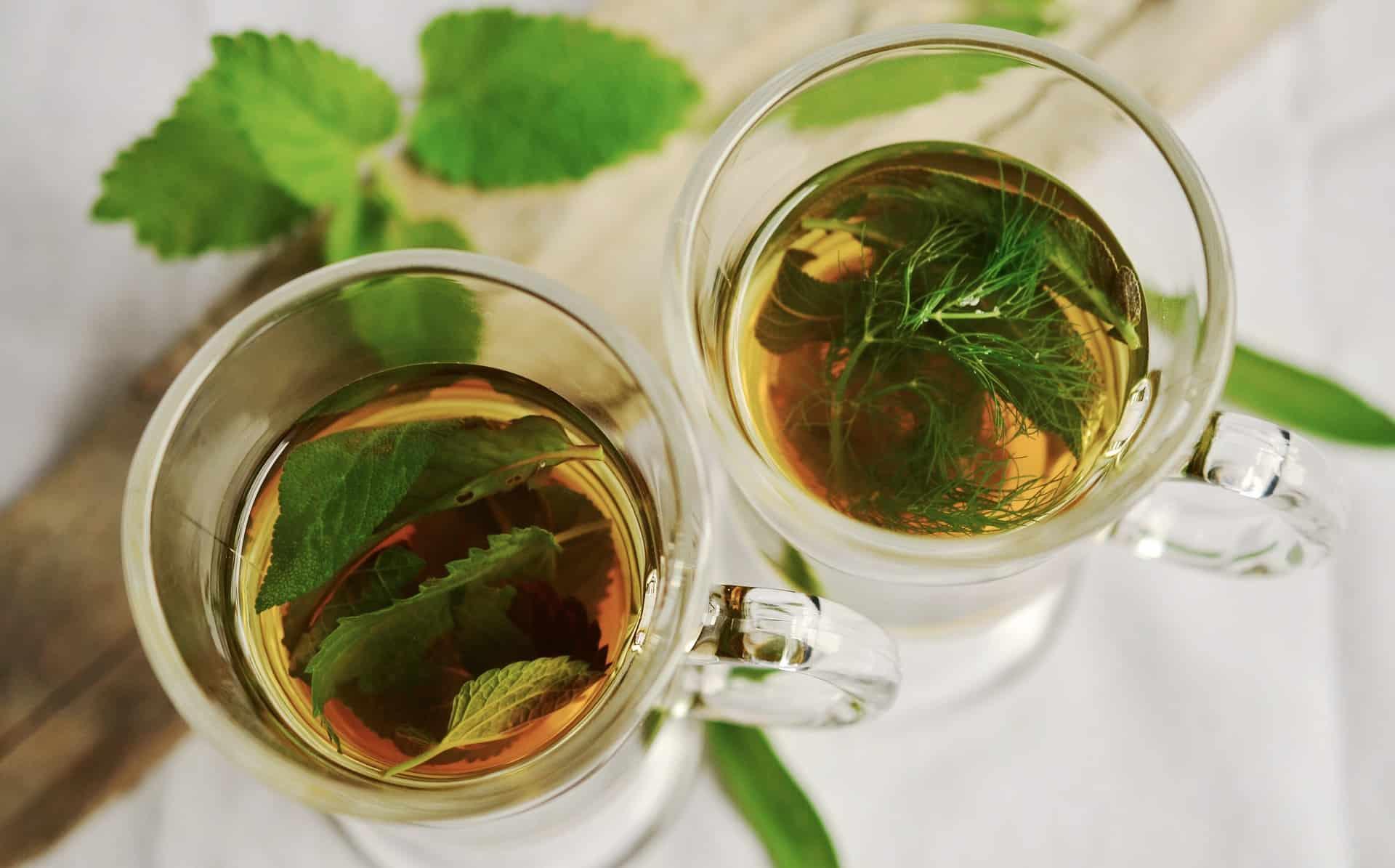 Detox Tee: Test & Empfehlungen (01/20)