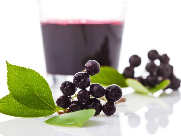 Chokeberries, Glass with aronia juice