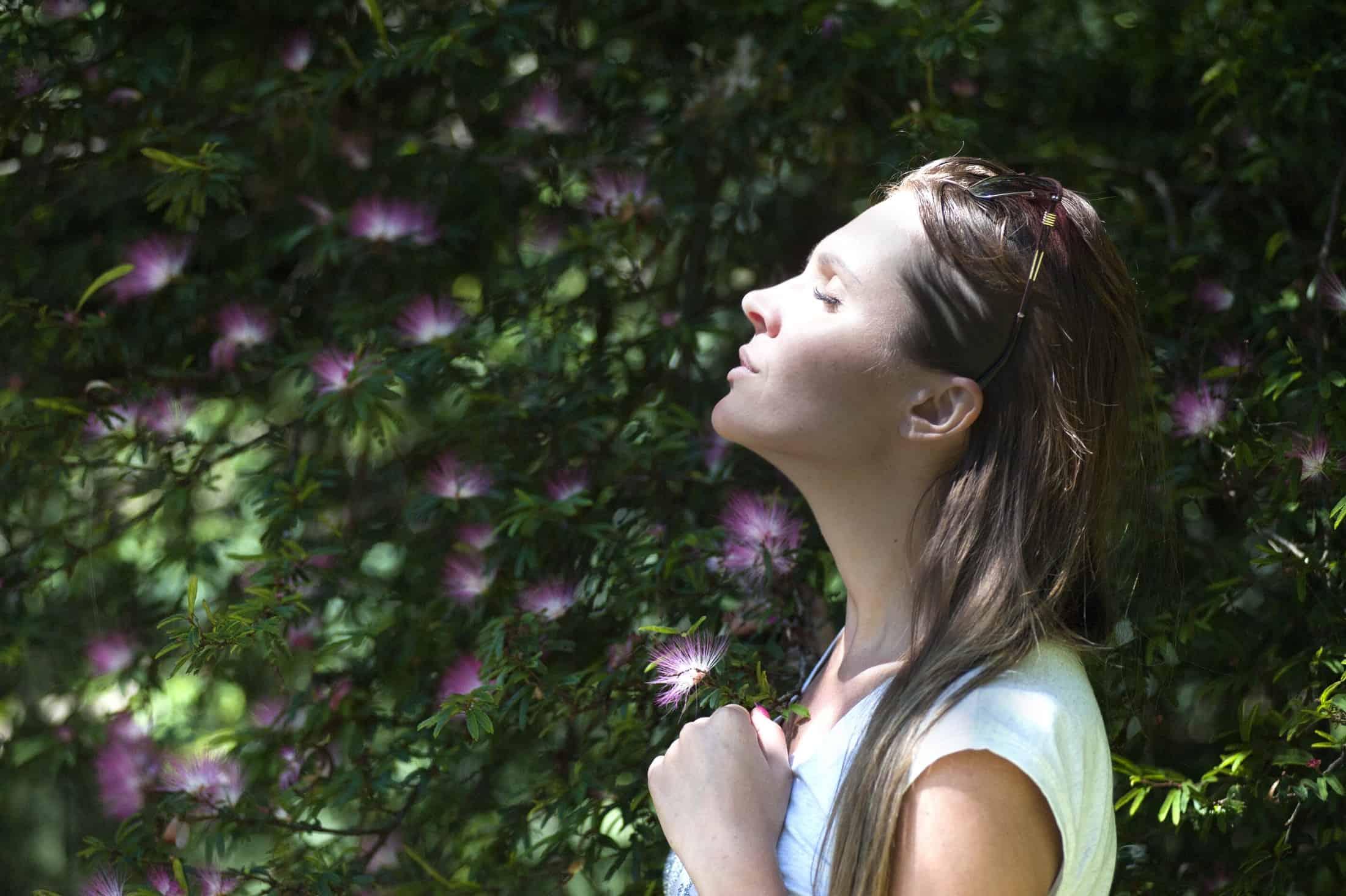 Nasenspreizer: Test & Empfehlungen (06/20)