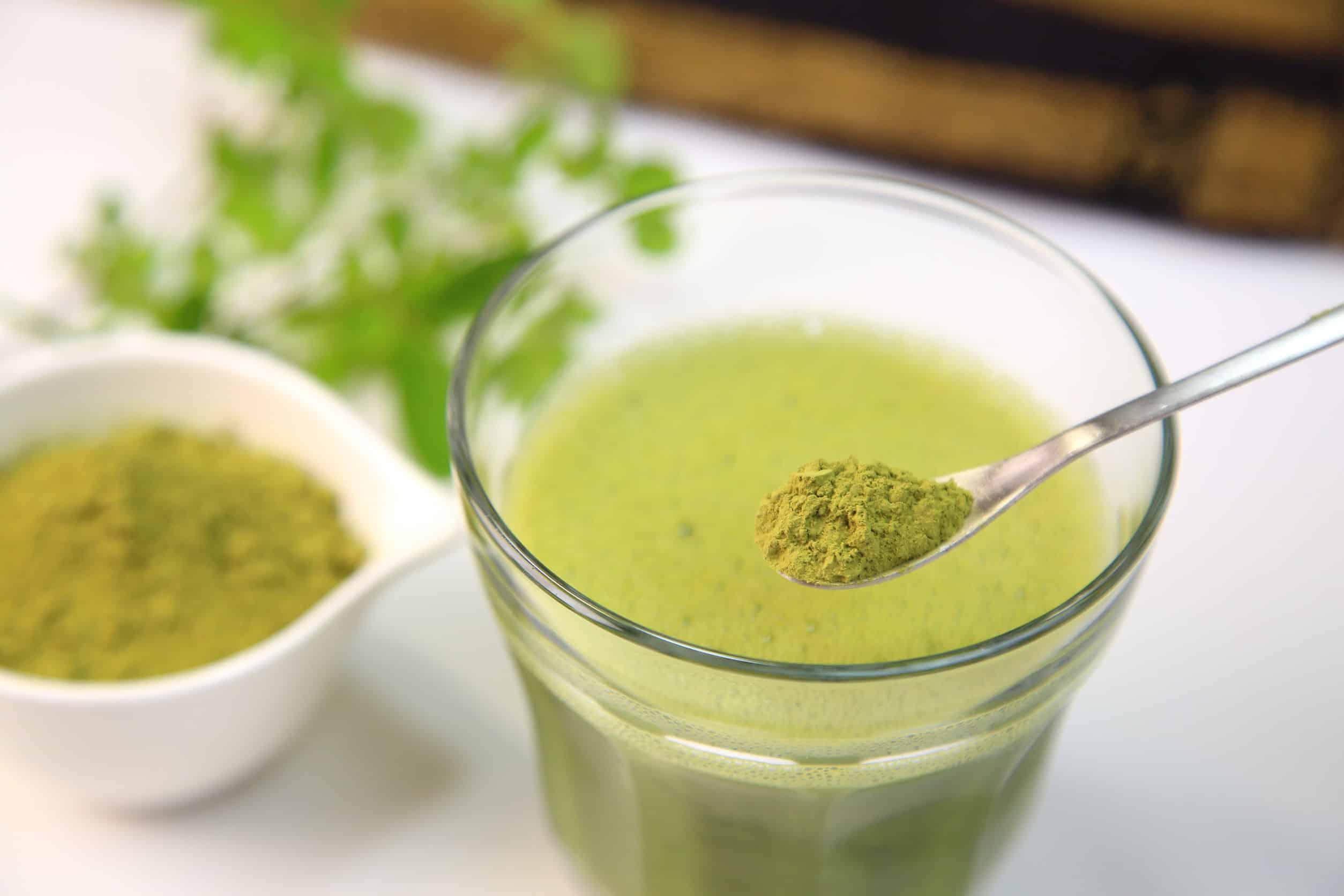 Moringa Tee: Test & Empfehlungen (08/20)