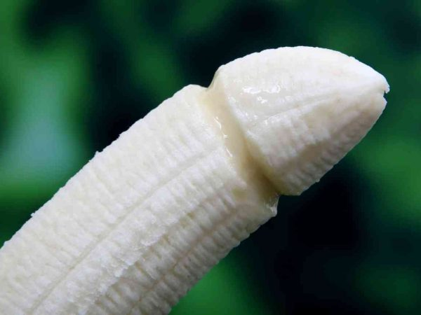 12 Penis-Fakten, die dich überraschen werden