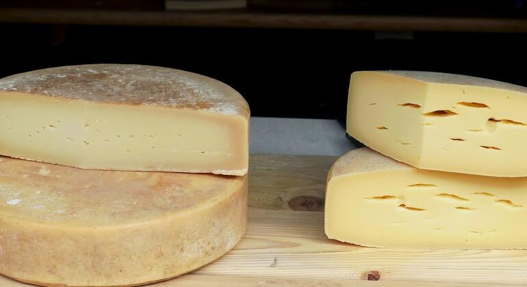 Vier grosse Stücke Käse